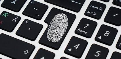 Dia da Internet Segura: Saiba como proteger a sua identidade